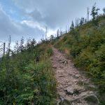 Szlak żółty z Baraniej Góry