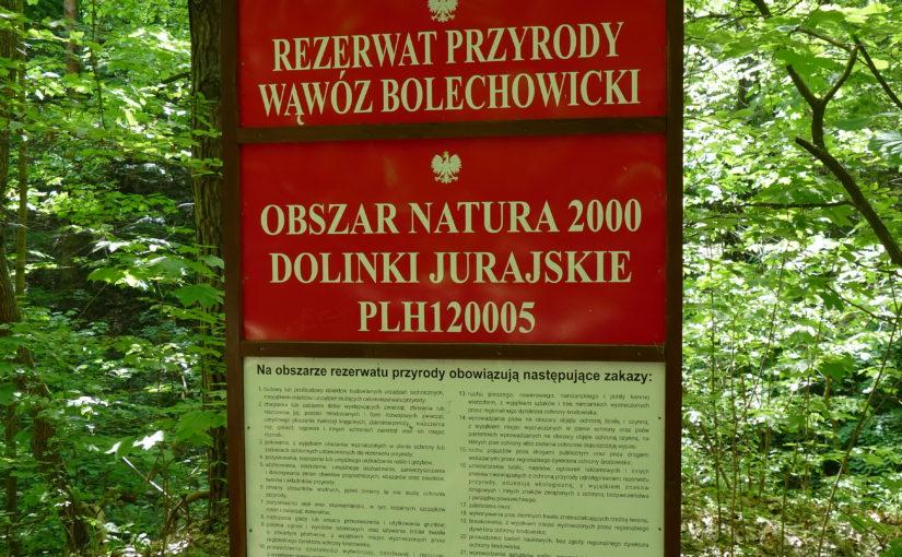 Dolina Bolechowicka, wąwóz.