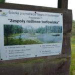 Torfowisko Bagno Przecławskie