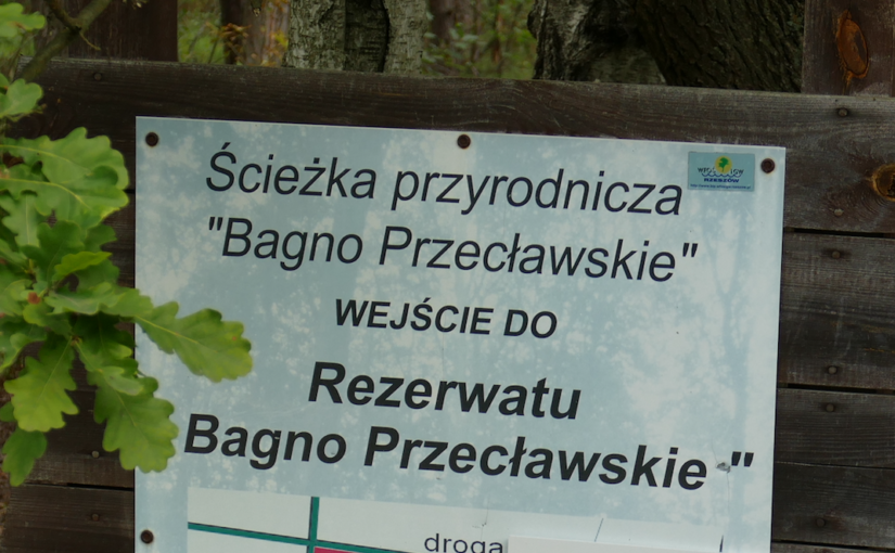 Bagno Przecławskie, Rezerwat przyrody