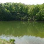 Zbiornik wodny Zielony Staw w okolicy Pustyni Błędowskiej